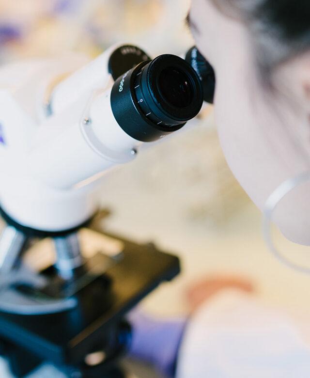 Etudiant utlisant un microscope lors de travaux pratiques